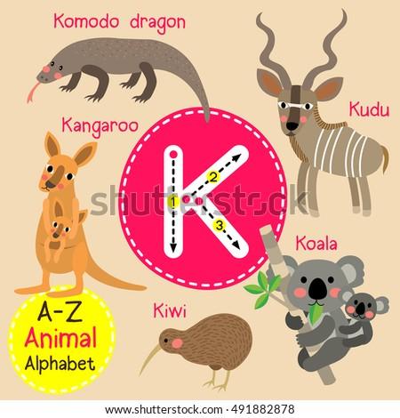 cute children zoo alphabet k
