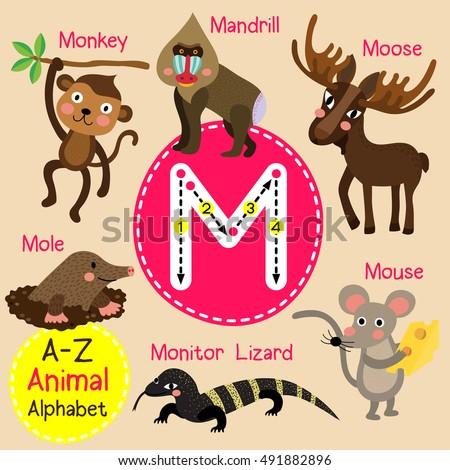 cute children zoo alphabet m