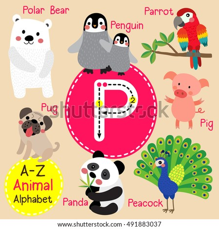 cute children zoo alphabet p