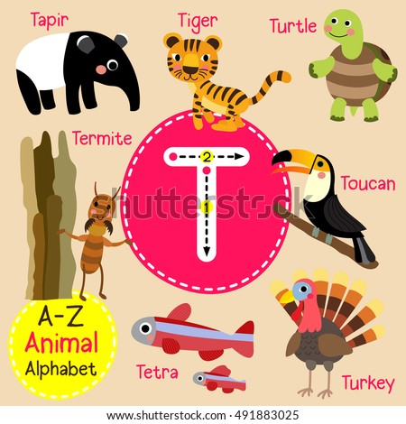 cute children zoo alphabet t
