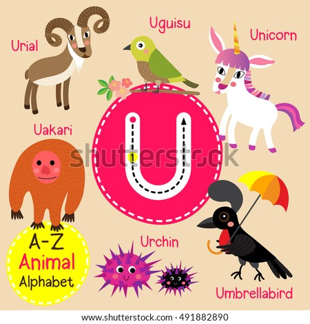 cute children zoo alphabet u