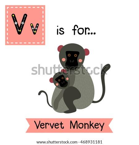 cute children zoo alphabet v