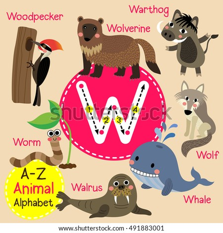cute children zoo alphabet w
