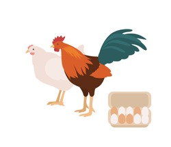 Cute cock, chicken and carton or box full of eggs. Rooster and hen isolated on white background. Free range domestic fowl, pair of poultry or farm birds. Flat cartoon colorful vector illustration.