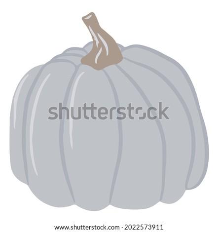 Cute colored pumpkin, unusual pumpkin, single illustration on an isolated white background, autumn pumpkin, autumn vegetable. Cartoon illustration, modern design. Halloween pumpkin. Vector, Print