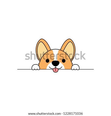 cute corgi dog paws up over