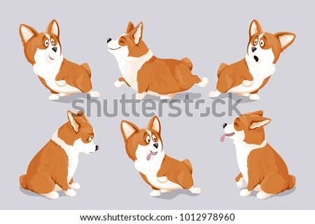 cute corgi dog puppies; isolated, hand drawn, vector illustration; perfect as kid's room wall art, prints on T-shirts, children's apparel, also for greeting cards and other designs; year of yellow dog