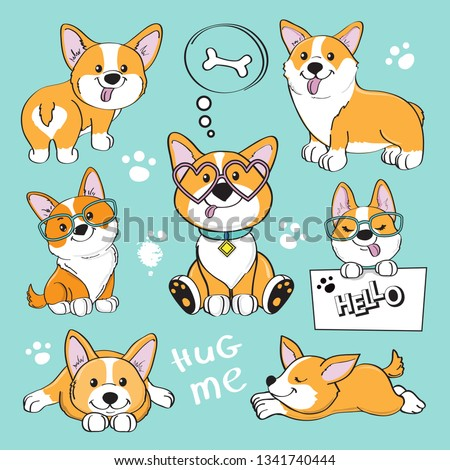 Cute dog corgi collection on a blue background