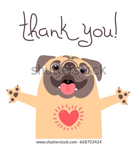 cute dog says thank you pug