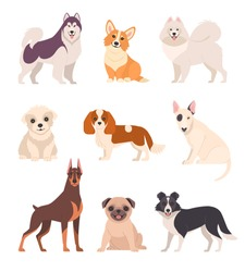 Cute dogs collection. Vector illustration of cartoon different breeds dogs, such as alaskan malamute, corgi, samoyed, border collie, doberman pinscher and pug in flat style. Isolated on white.