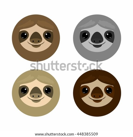 cute face sloth  animals sloth