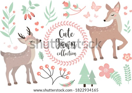 cute fawn character set of