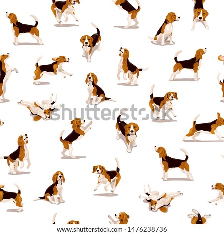 Cute flat beagle puppy in various poses and action. Seamless pattern with funny dogs. Bright vector background with domestic pets Zdjęcia stock ©