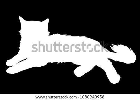 cute fluffy cat lays vector
