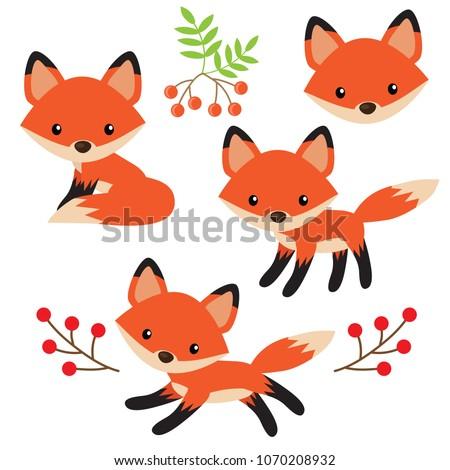 Cute fox vector cartoon illustration