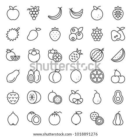 Cute fruit outline icon set, such as orange, kiwi, coconut, banana, papaya, peach, tropical fruits