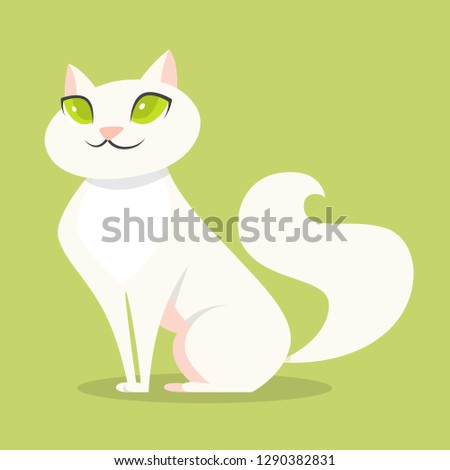 cute funny cat with white fur