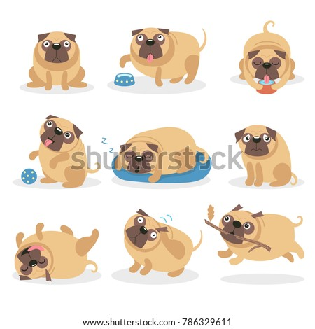 cute funny pug dog set  dog in