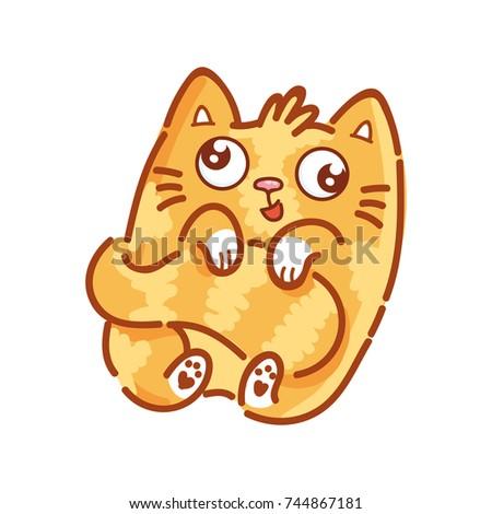 cute ginger cat  funny