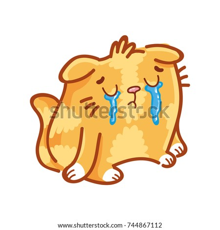 cute ginger cat  sad  crying