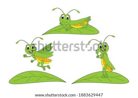 cute grasshopper animal cartoon