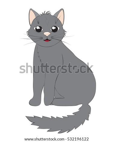 Stock Photo Cute gray cat