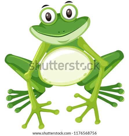 Cute green frog character illustration