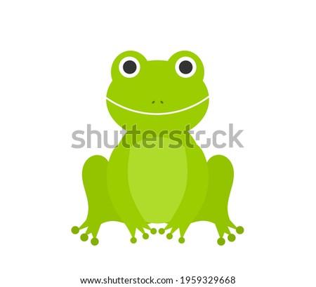 Cute green frog sitting. Vector illustration.