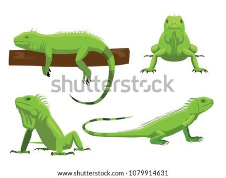 cute green iguana poses cartoon ...