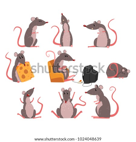 cute grey mouse set  funny