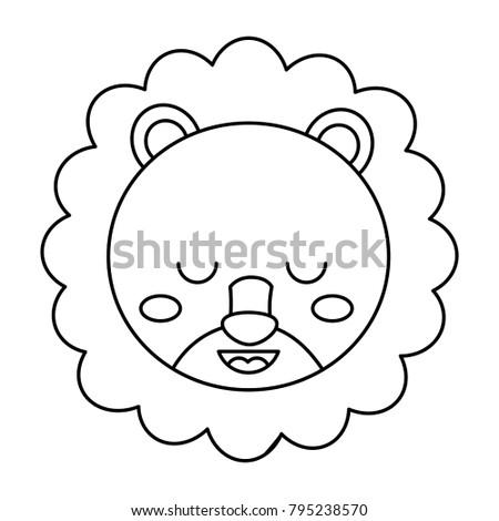 cute head lion animal close