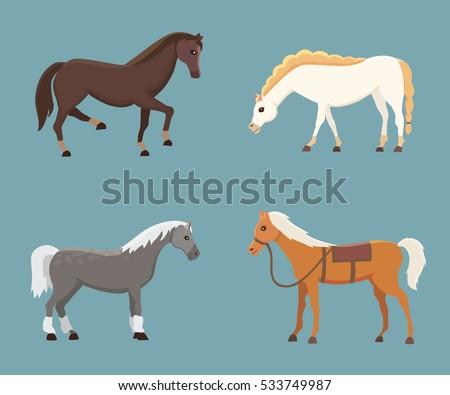 cute horses in various poses...