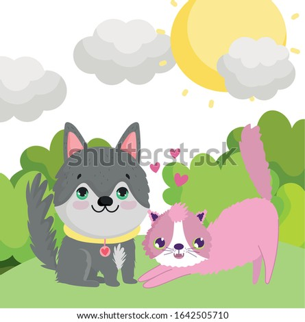 cute husky dog and pink cat in