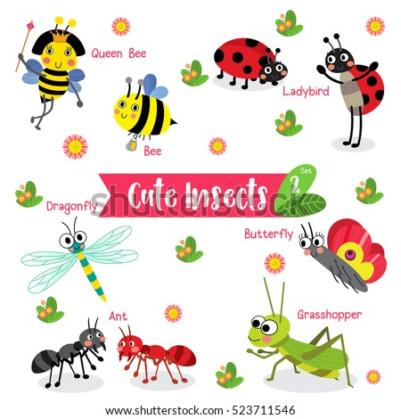 Cute Insects Animal cartoon on white background with animal name. Set 2.