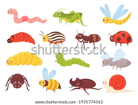 Cute insects vector illustration set. Cartoon colorful funny insect characters for childish kids collection with grasshopper ant bug dragonfly worm spider fly ladybug bee beetle isolated on white