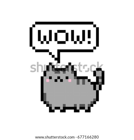 cute kitten domestic pet pixel