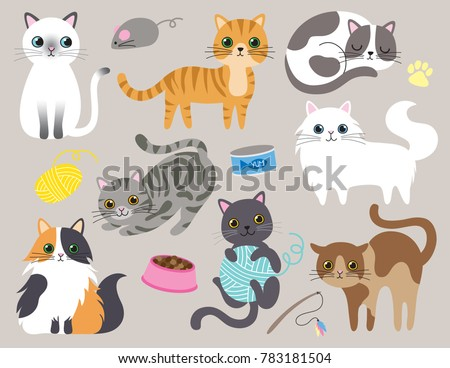 cute kitty cat vector