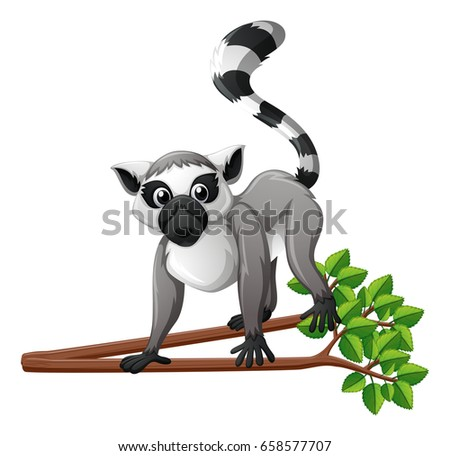 Cute lemur on the branch illustration