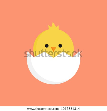 cute little chick in cracked