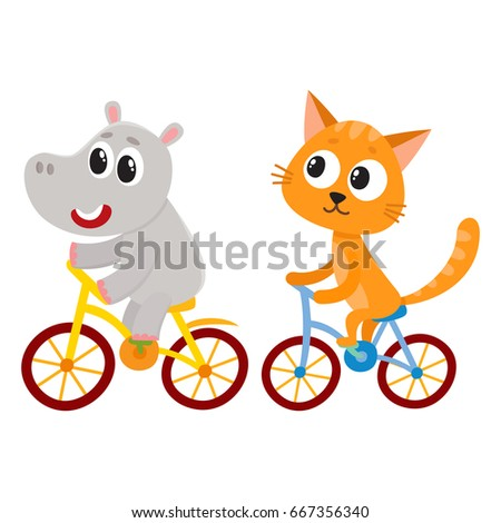 Cute little hippo and cat characters riding bicycles together, cartoon vector illustration isolated on white background. Baby hippo and kitten animal characters riding bicycles, cycling