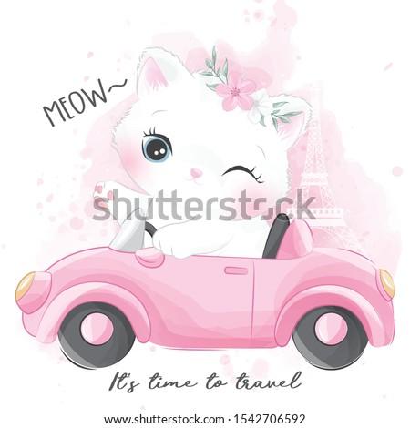 cute little kitty riding a car