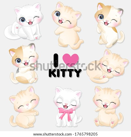 cute little kitty with