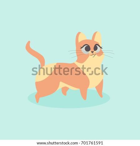 cute little orange cat vector