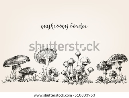 cute mushrooms border  hand