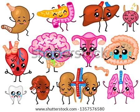 Cute organs. Happy human, Set of smiling characters. Vector pins, cartoon kawaii icons. Healthy heart, stomach, liver, bladder, uterus organ, lungs, kidneys, gallbladder, intestine, pancreas, brain.