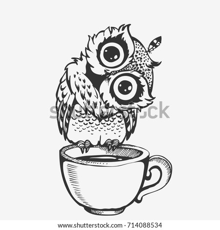 cute owl cartoon bird character