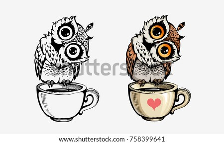 cute owls collection color and