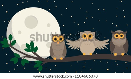 cute owls sit at branch under