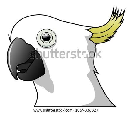 Cute parrot bird cartoon isolated on white background. Vector illustration
