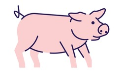 Cute pig side view flat vector illustration. Livestock farming, domestic animal husbandry design element with outline. Pork meat production logo. Cartoon piglet, hog isolated on white background